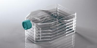 Multi-Layer Cell Culture Flasks