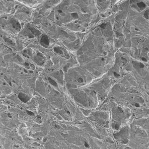 PTFE Unlaminated Membrane Filters